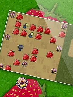Image Berry Erro