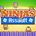 Ninjas De Assalto